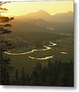 View At Dawn Of The Tuolumne River Metal Print by Phil Schermeister