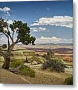 View From A Mesa Metal Print