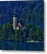 View From Castle Metal Print