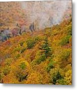 View From North Mountain Look-off Metal Print