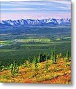 View From Ogilvie Ridge Lookout Metal Print