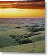 View From The Cypress Hills Metal Print