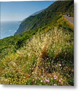 View From The Pacific Coastal Highway Metal Print by Steven Ainsworth