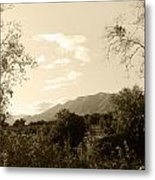 View In The Valley Metal Print