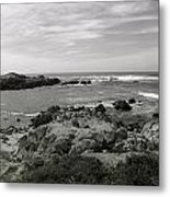View Of The Cove Metal Print