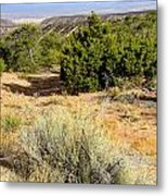 View Of The Desert New Mexico Metal Print