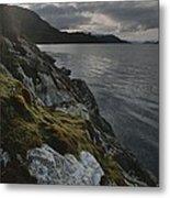 View Of The Mossy Shoreline Of Taraba Metal Print