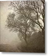 Vigilants Trees In The Misty Road Metal Print