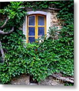Vine Covered Stone House Metal Print