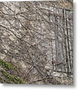 Vinely Wrapped Metal Print