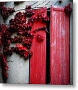 Vines On Red Shutters Metal Print