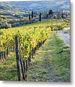 Vineyards And Farmhouse Metal Print