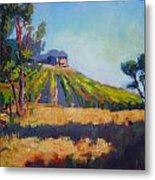 Vineyards At Sarver Metal Print