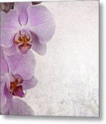 Vintage Orchids Metal Print