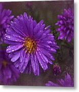 Vintage Purple  Metal Print by Richard Cummings