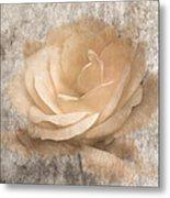 Vintage Rose IIi Metal Print