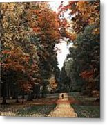 Virginia Water Metal Print