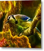 Visions Of A Blue Jay Metal Print