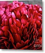 Vivid Red Metal Print