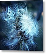 Voice Of A Thistle Metal Print