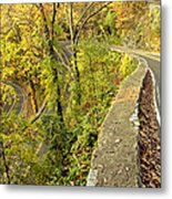 W Road In Autumn Metal Print