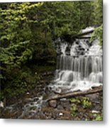 Wagner Falls Forest Metal Print