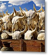Wagon Full Of Animal Skulls Metal Print by Garry Gay