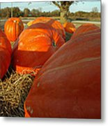 Wagon Ride For Pumpkins Metal Print