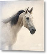 Waiting For My Lady Metal Print by Betty LaRue