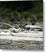Waiting For The Tides To Come In Metal Print