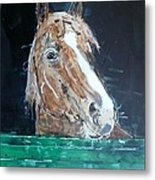 Waiting - Horse Portrait Metal Print