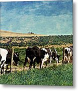 Waiting In Line Metal Print by Kathy Jennings
