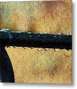 Walk Me Out In The Morning Dew Metal Print