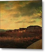 Walking Alone Metal Print by Laurie Search