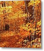 Walking Through The Maple Trees  Metal Print