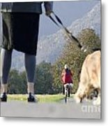 Walking With Her Dogs Metal Print
