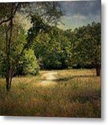 Wandering Path I Metal Print