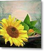 Warm Light Metal Print