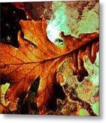Warm Oak Metal Print