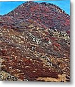 Wasatch Mountains In Ogden Utah Metal Print