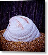Washed A Shore - 2 Metal Print