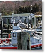 Watchful Metal Print by Extrospection Art