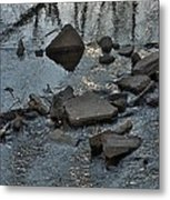 Water And Woods Metal Print