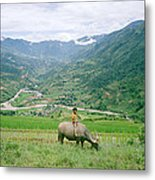 Water Buffalo Boy Metal Print