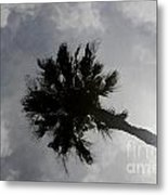 Water Color Palm Metal Print