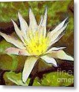 Water Lily Metal Print by Odon Czintos