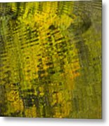 Water Reflection Abstract Autumn 1 D Metal Print