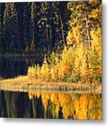 Water Reflection At Jade Lake In Northern Saskatchewan Metal Print