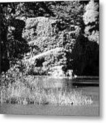 Water Rock Flower In Central Park Metal Print
