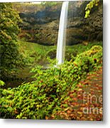 Waterfall Along The Trail Metal Print